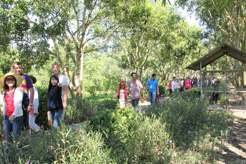 Summer promotions at Nhan Tam Ecological Tourist Site