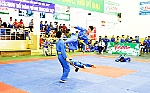 Competitive vovinam competitions at Nha Trang Physical Exercise and Sports Festival 2017