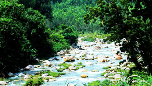 Natural beauty of Da Giang Stream