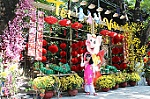 Resplendent Lunar New Year decorations in Nha Trang