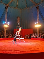 Thrilling circus shows of Vietnam National Circus in Nha Trang