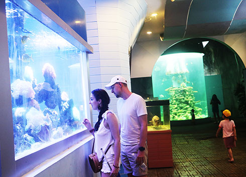 Visitors contemplating coral tank