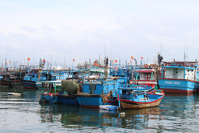 Checking 490 fishing boats at ports