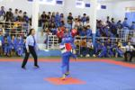 120 players join Nha Trang City's 2020 vovinam tournament for age groups