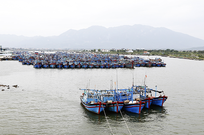 Storm shelter for fishing boats in Ninh Hai
