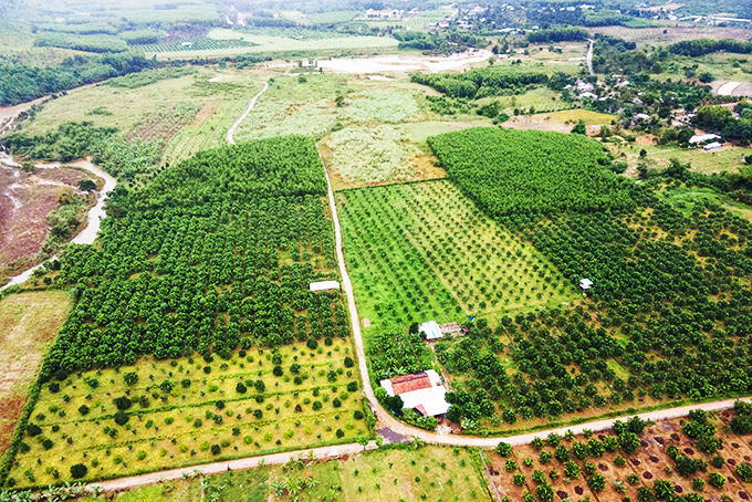Khanh Vinh aims to increase value of agricultural products