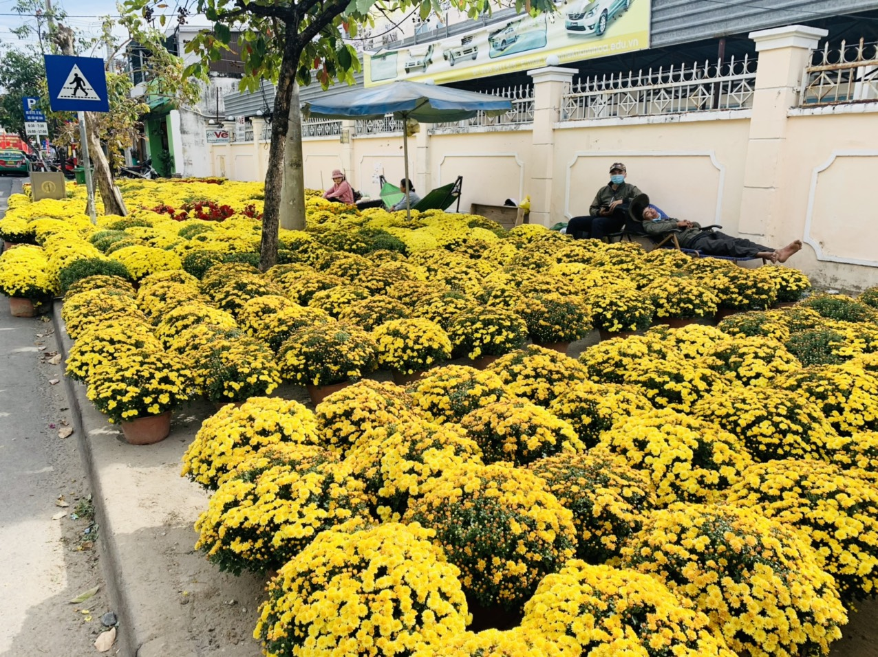 Chrysanthemums for sale on Le Thanh Phuong Street