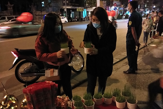 """Rice seedlings are sold as """"lucky things"""" on Lunar New Year's Eve"""